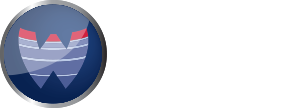 Wound Healing Society Foundation